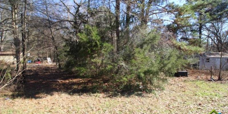 Lot 9 Scott Mobile Trail, Frankston, Texas 75763, ,Residential,For Sale,Scott Mobile Trail,10117930