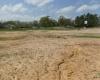 TBD Hwy 271, Gilmer, Texas 75645, ,Land,For Sale,Hwy 271,10089755